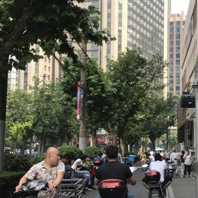 川沙古镇沿街旺铺出租
