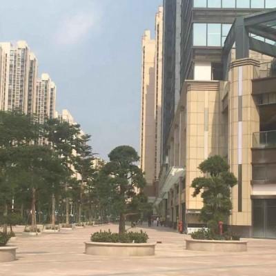 佛山南海金融高新区京华广场商铺招租