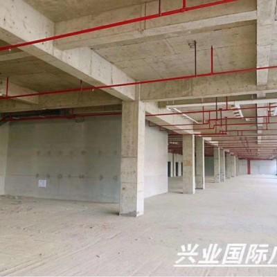 出租青浦繁华地段商业街商铺