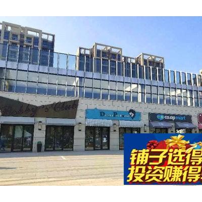 西上海海洋馆 景区旺铺,面积小,单价低!即买即收租