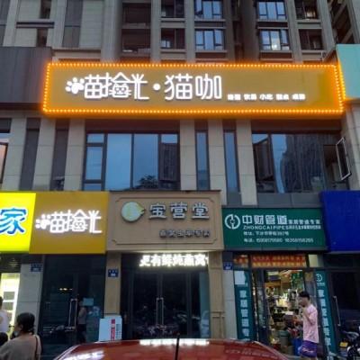 杭州下沙人气猫咖转让